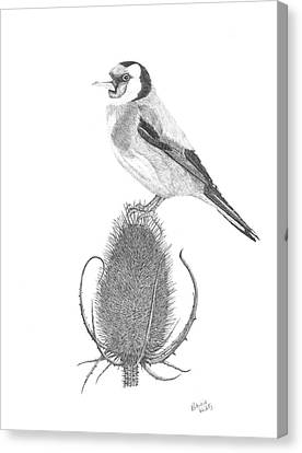 European Goldfinch Canvas Print by Patricia Hiltz