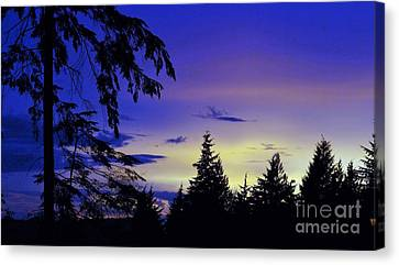Canvas Print featuring the photograph Evening Blue by Victor K