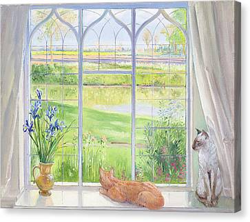 Siamese Canvas Print - Evening Breeze by Timothy Easton