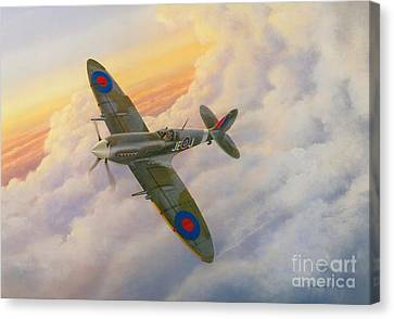 Evening Flight Canvas Print by Michael Swanson