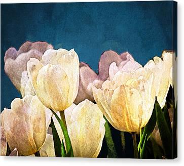 Evening Garden Canvas Print by Moon Stumpp