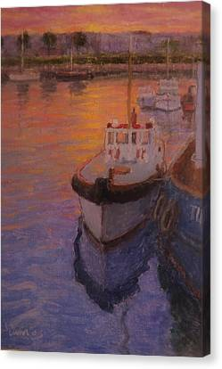 Evening Gisbourne Harbour Canvas Print by Terry Perham