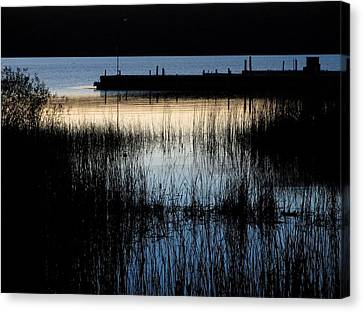 Evening Glow Canvas Print by Mary Wolf