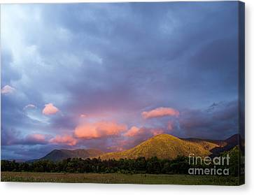 Canvas Print featuring the photograph Evening In Cades Cove - D009913 by Daniel Dempster