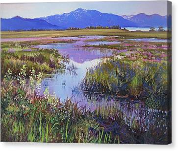 Evening In The Marsh Canvas Print by Bonita Paulis