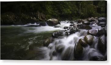 Evening On The Sarapiqui River Canvas Print