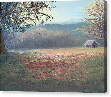Evening Pasture Canvas Print by Patti Gordon