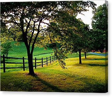 Evening Peace Canvas Print