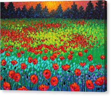 Evening Poppies Canvas Print