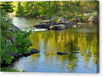 Shiny Canvas Print - Evening Reflections At Lower Basswood Falls by Larry Ricker