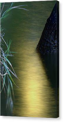 Canvas Print featuring the photograph Evening Reflections by Karen Musick