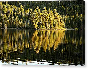 Evening Reflections On Alder Lake Canvas Print by Larry Ricker