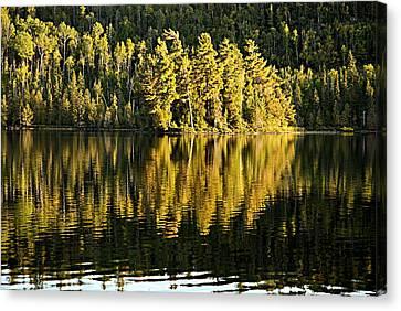 Evening Reflections On Alder Lake Canvas Print