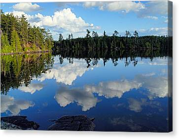 Evening Reflections On Spoon Lake Canvas Print by Larry Ricker