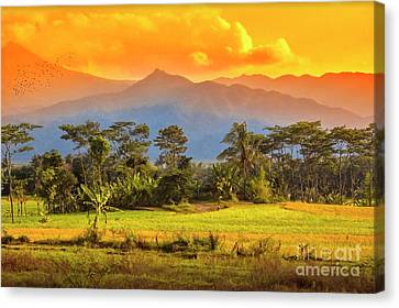 Canvas Print featuring the photograph Evening Scene by Charuhas Images