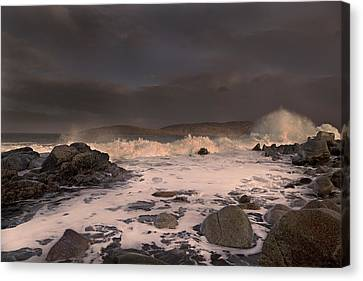 Evening Seascape  Canvas Print by Betsy Knapp