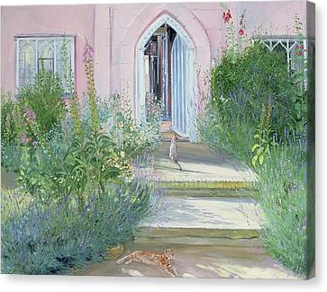 Foxglove Flowers Canvas Print - Evening Shadows by Timothy Easton