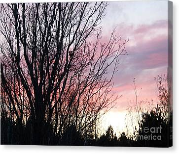 Canvas Print featuring the photograph Evening Sky - October 27 by Jackie Mueller-Jones