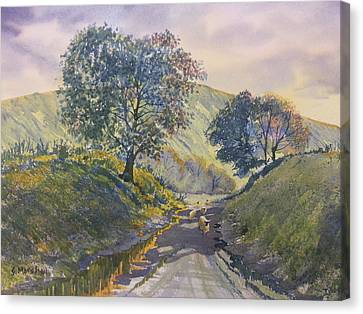 Evening Stroll In Millington Dale Canvas Print
