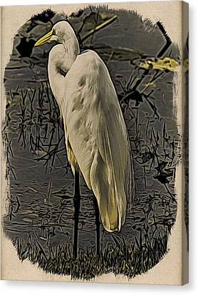 Canvas Print - Everglades 2 by Steven Richman