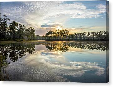 Everglades National Park Canvas Print - Everglades Ovation by Jon Glaser