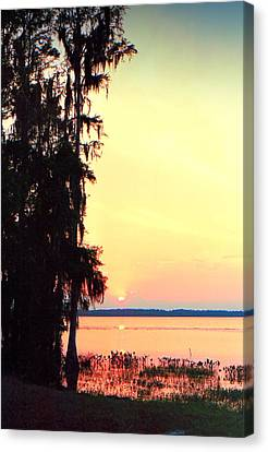 Everglades Sunset Canvas Print by Lynnette Johns