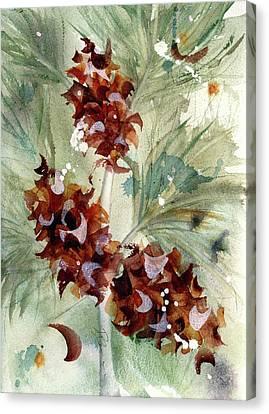 Evergreen Branch Canvas Print by Dawn Derman