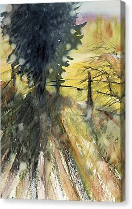 Evergreen Canvas Print by Judith Levins