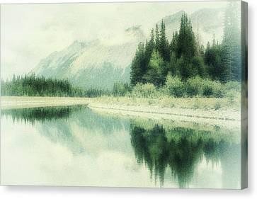 Evergreen Canvas Print
