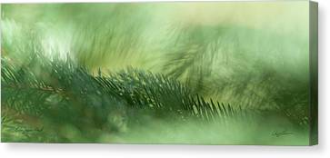 Canvas Print featuring the photograph Evergreen Mist by Ann Lauwers