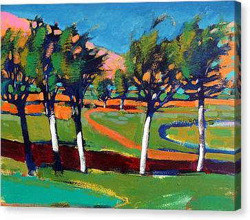 Loose Style Canvas Print - Evergreen by Paul Powis