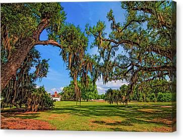 Evergreen Plantation Canvas Print by Steve Harrington