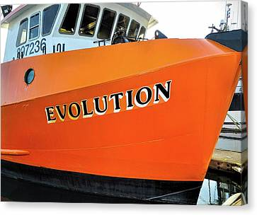 Evolution 2 Canvas Print by Thomas J Rhodes