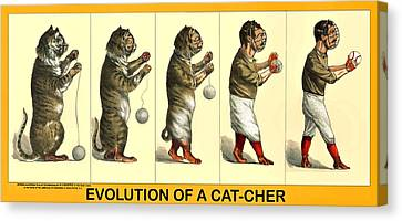 Evolution Of A Cat-cher Canvas Print