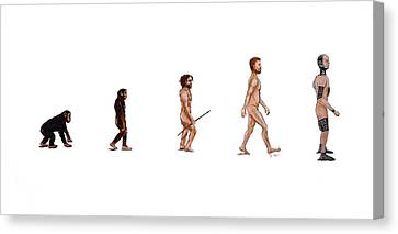 Evolution Of Rob Canvas Print by Jennifer Lynch