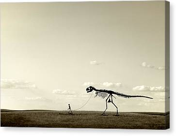 Educational Canvas Print - Evolution by Todd Klassy