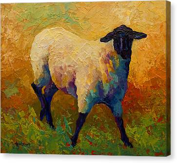Ewe Portrait Iv Canvas Print by Marion Rose