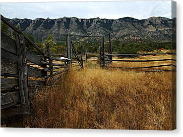Bighorn Canyon National Recreation Area Canvas Print - Ewing-snell Ranch 1 by Larry Ricker