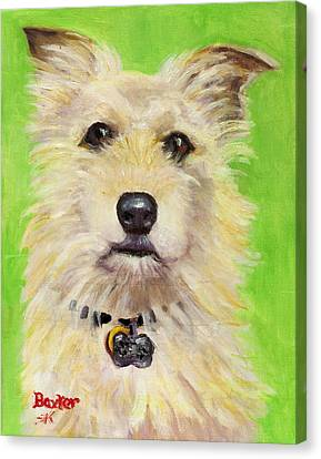 Example Of Pet Portrait Canvas Print by Sheila Kinsey