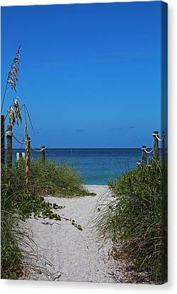 Canvas Print featuring the photograph Exclusively Captiva by Michiale Schneider