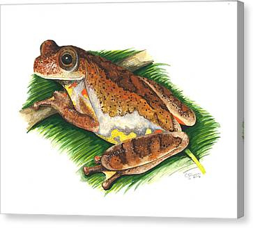 Executioner Treefrog Canvas Print