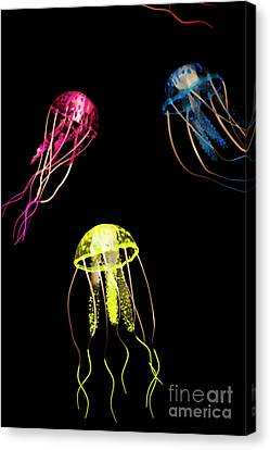 Exotic Aquarium Canvas Print