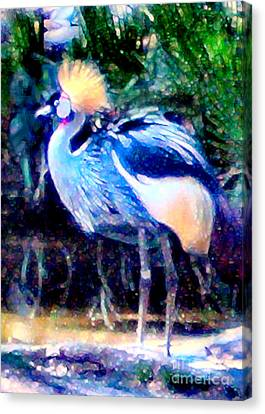 Exotic Bird Canvas Print by Elinor Mavor