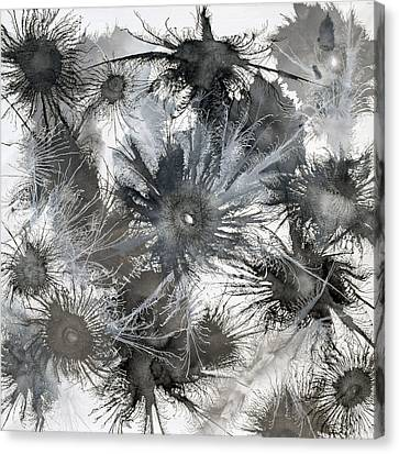 Canvas Print - Exploflora Series No 12 by Sumit Mehndiratta
