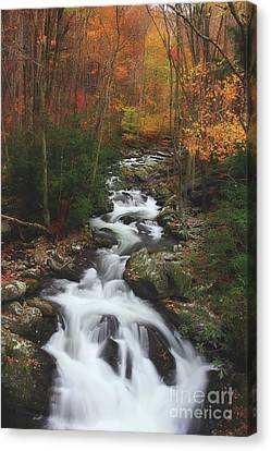 Exploring Autumn Canvas Print by Michael Eingle