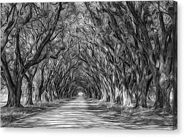 Evergreen Plantation Canvas Print - Exploring Louisiana - Paint Bw by Steve Harrington