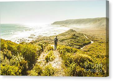 Trial Canvas Print - Exploring The West Coast Of Tasmania by Jorgo Photography - Wall Art Gallery