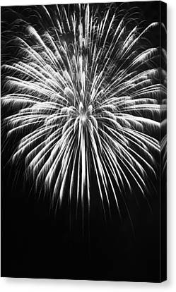 Explosion Canvas Print by Colleen Coccia