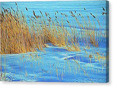 Expressionalism Blowing In The Wind Canvas Print by Aimee L Maher Photography and Art Visit ALMGallerydotcom