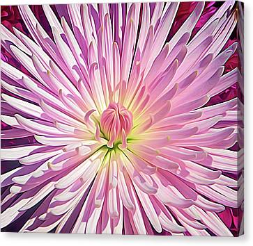 Pretty Flowers Canvas Print - Expressionalism Starburst by Aimee L Maher Photography and Art Visit ALMGallerydotcom